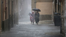 Kvinnawalkng under det bärande paraplyet för hällregn Royaltyfri Bild