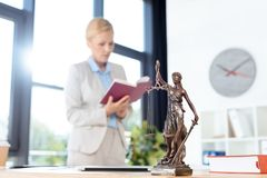 Kvinnlig advokatläsebok arkivfoton