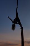 Kvinnlig akrobat på poltnakhen i himlen Fotografering för Bildbyråer