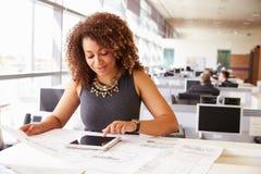 Kvinnlig arkitekt för ung afrikansk amerikan som arbetar i ett kontor Arkivbilder