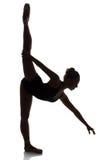 Kvinnlig balettdansör Royaltyfria Foton