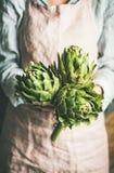 Kvinnlig bonde i förklädet som rymmer nya kronärtskockor royaltyfri fotografi