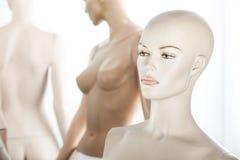 Kvinnlig dockastående Arkivfoto