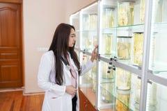 Kvinnlig doktor i anatomilaboratorium medicinskt museum begrepp av sjukv?rden royaltyfri foto