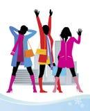 kvinnlig för 2 mode royaltyfri illustrationer
