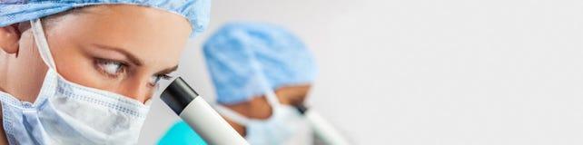 Kvinnlig forskare i panorama för medicinsk forskninglabb eller laboratorium royaltyfri fotografi