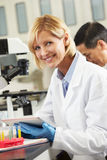 Kvinnlig forskare som använder Tabletdatoren i laboratorium Arkivbild