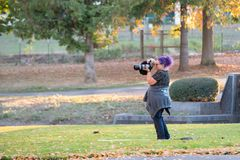 Kvinnlig fotograf med purpurfärgat hår i parkera royaltyfria bilder