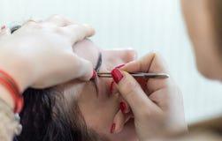 Kvinnlig framsida för smink Ögonbryn, ögon och hår arkivbild