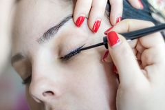 Kvinnlig framsida för smink Ögonbryn, ögon och hår royaltyfri bild
