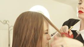 Kvinnlig frisör som kammar trådhår, innan att klippa den unga kvinnan i friseringsalong Slut upp frisördanande arkivfilmer