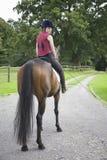 Kvinnlig hästrygg Rider Sitting On Horse Royaltyfri Foto