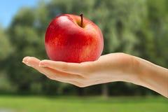 Kvinnlig hand med det röda äpplet royaltyfri bild