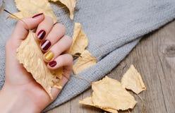 Kvinnlig hand med rött mörker - spika designen arkivfoton