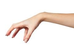 Kvinnlig hand som når för något på vit Royaltyfri Fotografi