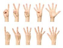 Kvinnlig hand som räknar från en till fem Royaltyfri Foto