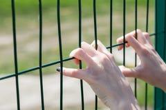 Kvinnlig hand som rymmer staketet för chain sammanlänkning Gräns-, begränsnings- eller abridgementbegrepp Arkivbild