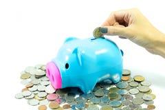 Kvinnlig hand som sätter pengarmynt in i piggy för sparande pengar på w royaltyfri bild