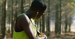 Kvinnlig jogger som justerar armmusikbandet i skogen 4k lager videofilmer
