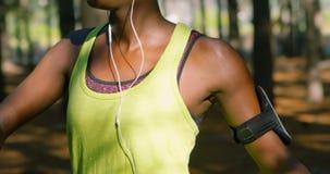 Kvinnlig jogger som sträcker i skogen 4k arkivfilmer