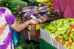 Kvinnlig köpare som betalar med kassa, når att ha köpt grönsaker på den manliga marknaden i Maldiverna royaltyfria bilder