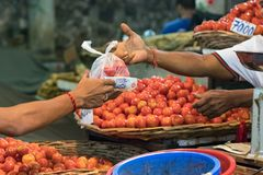 Kvinnlig köpare som betalar med kassa, når att ha köpt grönsaker på den manliga marknaden i Maldiverna fotografering för bildbyråer