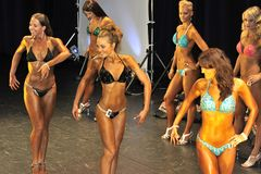 Kvinnlig kondition modellerar uppvisning deras bästa Royaltyfri Foto