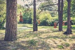 Kvinnlig musikalisk kvartett i natur Arkivbilder