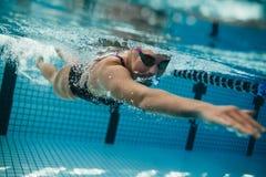 Kvinnlig simmare inom simbassäng royaltyfri bild