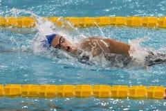 Kvinnlig simmare under 7th för Milano för Trofeo cittadi konkurrens simning Arkivfoton