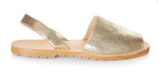 Kvinnlig sko på bakgrund Arkivbilder