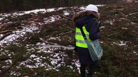 Kvinnlig skogsbrukinspektör som kontrollerar avverka platsen stock video