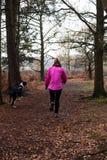 Kvinnlig som joggar med stora Dane Puppy Royaltyfri Foto