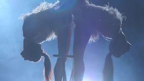 Kvinnlig stabilisator i beige liggande hängning för body tillbaka på flyg- beslag på svart bakgrund silhouette långsam rörelse cl lager videofilmer