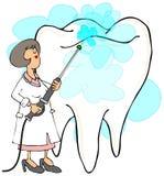 Kvinnlig tandläkare som gör ren en tand Arkivbild