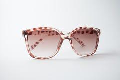 Kvinnlig tappningsolglasögon Arkivfoto