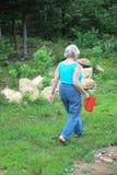 Kvinnlig trädgårdsmästare Arkivfoton