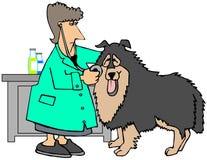 Kvinnlig veterinär som kontrollerar en stor hund stock illustrationer