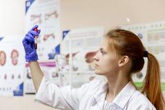 Kvinnlig veterinär som undersöker en hund i en veterinärklinik arkivfoto