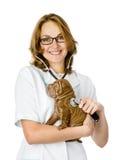 Kvinnlig veterinär som undersöker en sharpeivalphund Arkivbild