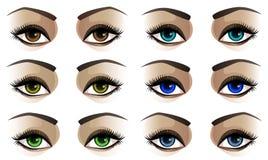 Kvinnliga ögon Stock Illustrationer