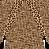 Kvinnliga ben med det djura trycket mönstrar strumpbyxor på leopardbakgrund Royaltyfri Fotografi