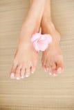 Kvinnliga ben med ljus - rosa färgen spikar och blomman Arkivbilder
