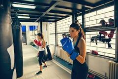 Kvinnliga boxare på utbildning Arkivbilder