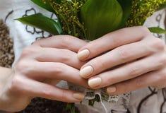 Kvinnliga händer med beiga spikar design royaltyfri foto
