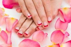 Kvinnliga händer med Manicured spikar fernissa Royaltyfri Fotografi