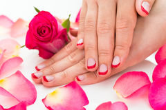 Kvinnliga händer med Manicured spikar fernissa Royaltyfri Bild