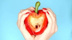 Kvinnliga händer med röd manikyr att rymma röd söt peppar i hand i form av en hjärta på en blå bakgrund stock video