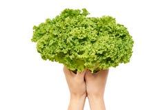 Kvinnliga händer rymmer en gräsplan och en ny grönsallat bakgrund isolerad white Arkivbild