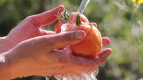 Kvinnliga händer tvättar grönsaker under strömmen av vatten mot bakgrunden av naturen arkivfilmer